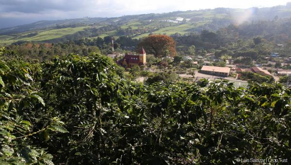 FELCO and Crop Trust get into the field in Costa Rica