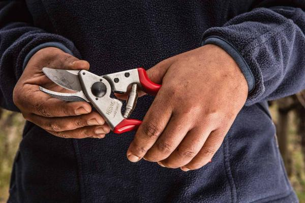 Three new pruning shears